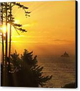 Sunset Thru The Trees Canvas Print by Andrew Soundarajan