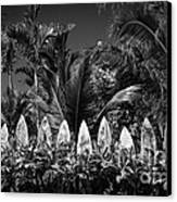 Surf Board Fence Maui Hawaii Black And White Canvas Print by Edward Fielding