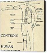 Surgery Controls The Human Mechanism   1906 Canvas Print by Daniel Hagerman