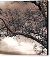 Surreal Fantasy Gothic South Carolina Oak Trees Canvas Print by Kathy Fornal