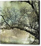 Surreal Gothic Dreamy Trees Nature Landscape Canvas Print by Kathy Fornal