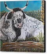 Swamp Bull Canvas Print by Richard Goohs