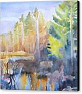 Swamp Color Canvas Print by Grace Keown