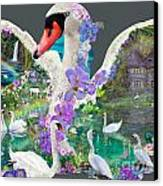 Swan Day Dream Canvas Print by Alixandra Mullins