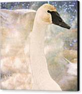 Swan Journey Canvas Print by Kathy Bassett