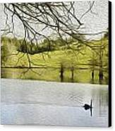 Swan Lake Canvas Print by Les Cunliffe