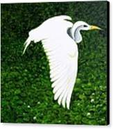 Swan-oil Painting Canvas Print by Rejeena Niaz