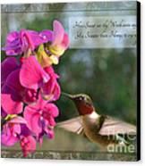 Sweet Pea Hummingbird Iv With Verse Canvas Print