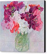 Sweet Peas Canvas Print by Ann Patrick