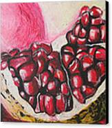 Sweet Pomegranate Canvas Print