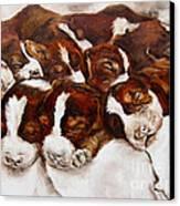 Sweet Sleep Canvas Print by Diane Kraudelt