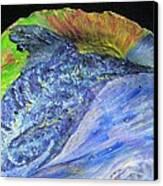 Swordfish In The Sun Canvas Print