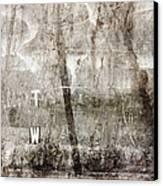 T W Canvas Print