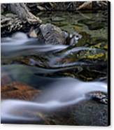 Tahoe Eagle River Canvas Print by Dave Dilli