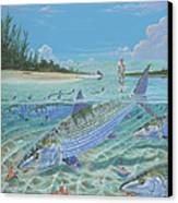 Tailing Bonefish In003 Canvas Print by Carey Chen