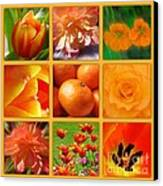 Tangerine Dream Window Canvas Print by Joan-Violet Stretch