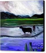 Tarapoto Peru Canvas Print by Pilar  Martinez-Byrne
