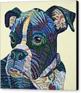 Tater - Portrait Of A Boxer Canvas Print by Erika Pochybova