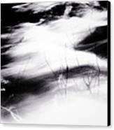 Tathata #000001 Canvas Print by Alex Zhul