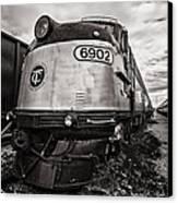 Tc 6902 Canvas Print by CJ Schmit