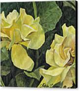 Tea Rose Canvas Print by Natasha Denger