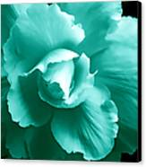 Teal Green Begonia Floral Canvas Print by Jennie Marie Schell