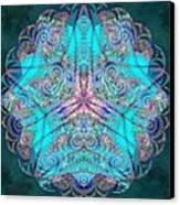 Teal Starfish Canvas Print by Derek Gedney