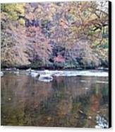 Tellico River In Fall Canvas Print by Regina McLeroy
