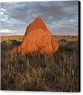 Termite Mound, Exmouth Western Canvas Print