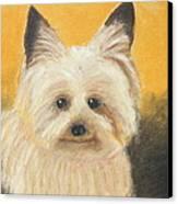 Terrier Canvas Print by Jeanne Fischer