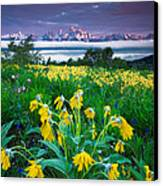 Teton Spring Wildflowers Canvas Print by Jerry Patterson