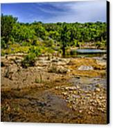 Texas Hill Country Stream Canvas Print by David and Carol Kelly