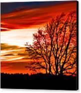 Texas Sunset Canvas Print by Darryl Dalton