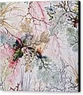 Textile Design Canvas Print by William Kilburn