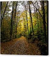 The Back Roads Of Autumn Canvas Print