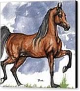 The Bay Arabian Horse 17 Canvas Print