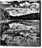 The Beautiful Fly Pond On Rondaxe Road - Old Forge Ny Canvas Print by David Patterson