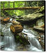 The Bridge At Alum Cave Canvas Print by Debra and Dave Vanderlaan