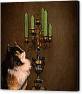 The Cat And The Candelabra Canvas Print