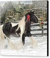 The Christmas Pony Canvas Print by Fran J Scott