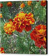 The Color Of Fire Canvas Print by Lewanda Laboy