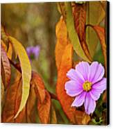 The Cosmos In The Peach Tree Canvas Print by Theresa Tahara