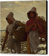 The Cotton Pickers Canvas Print by Winslow Homer