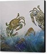 The Crabby Couple Canvas Print