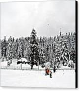 The Dazzle Of Winter Trees At Gulmarg - Kashmir- India- Viator's Agonism Canvas Print by Vijinder Singh