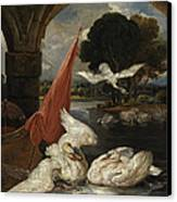 The Descent Of The Swan, Illustration Canvas Print