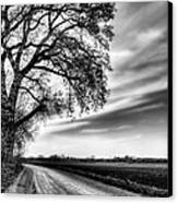 The Dirt Road In Black And White Canvas Print by JC Findley