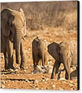 The Elephants Itching Rock Canvas Print by Paul W Sharpe Aka Wizard of Wonders