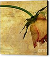 The End Of Love Canvas Print by John Edwards