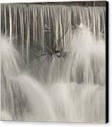 The Falls Canvas Print by Cindy Rubin